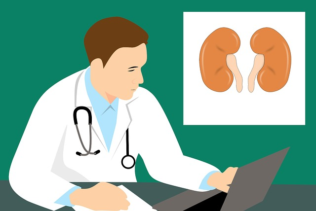 Kidney health and your weight are connected